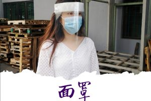FS-01 Ronson Transparent Face Shield Full Face Cover Mask With Sponge